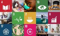 ¿Qué son los 17 ODS y para qué sirven?