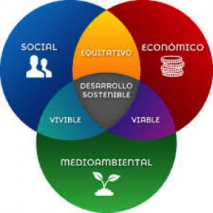 Trabajar la sostenibilidad en empresas y organizaciónes